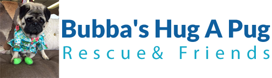 Bubba's Hug A Pug Rescue & Friends